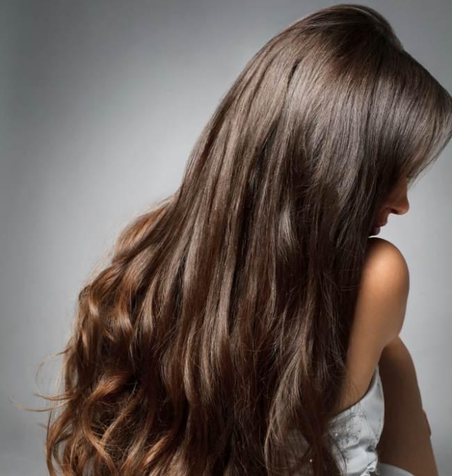 cabelo-saudavel-castanho