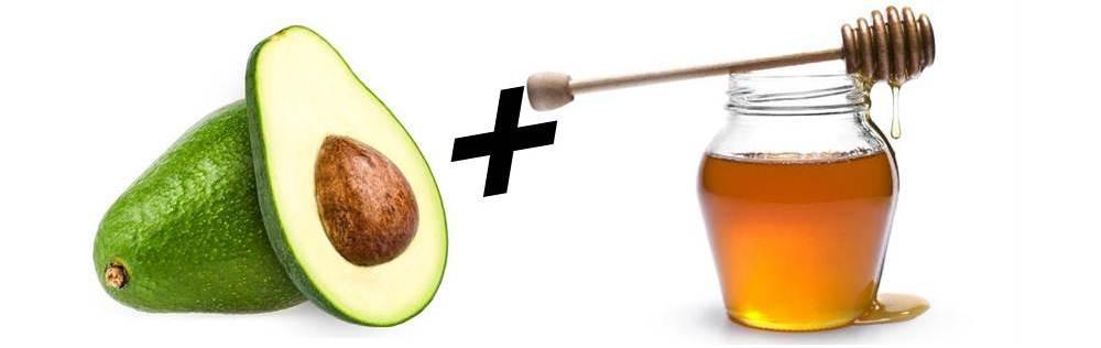 abacate e mel hidrata os cabelos